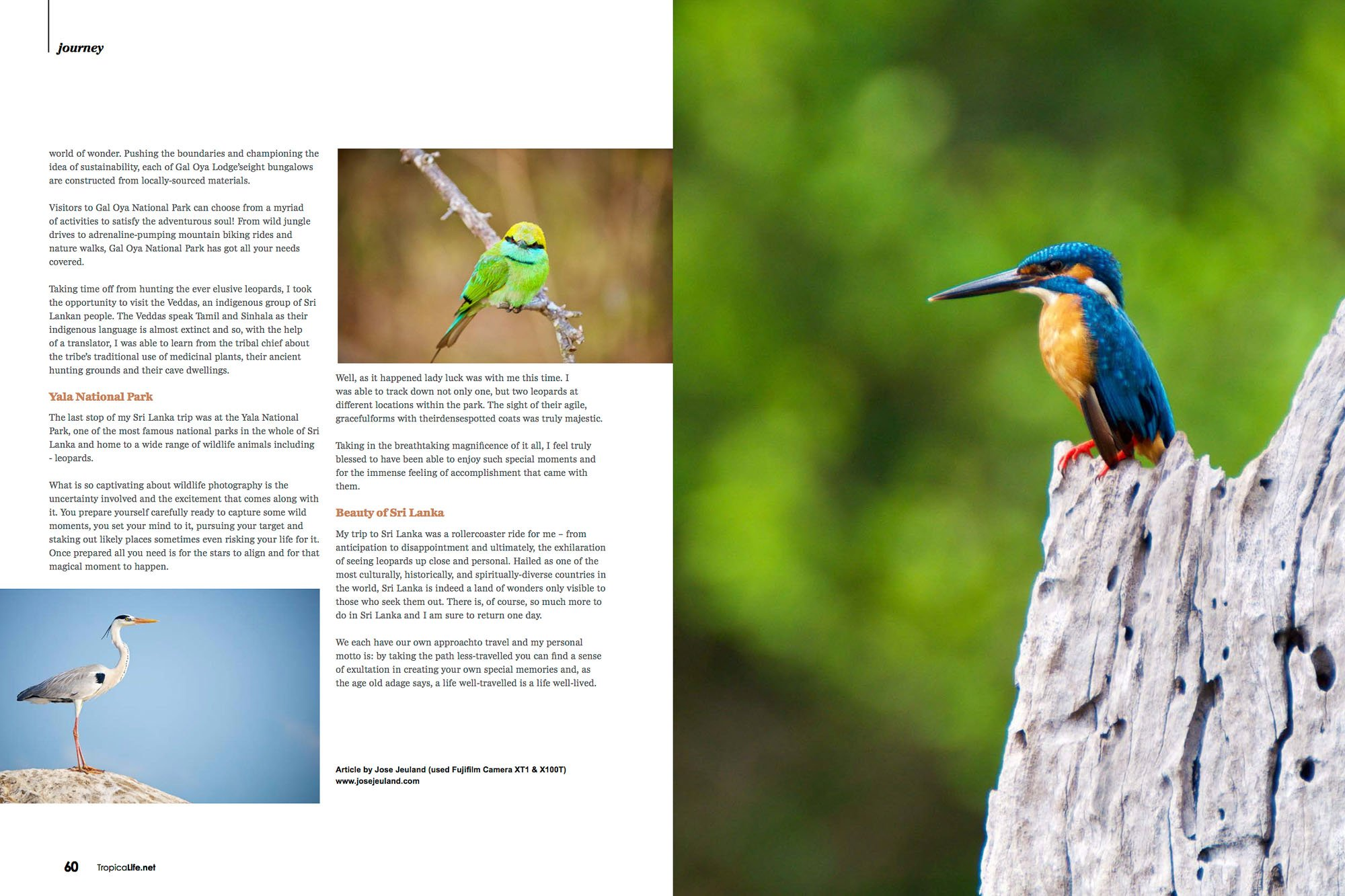 Tropical Life Magazine Sri Lanka Jose Jeuland