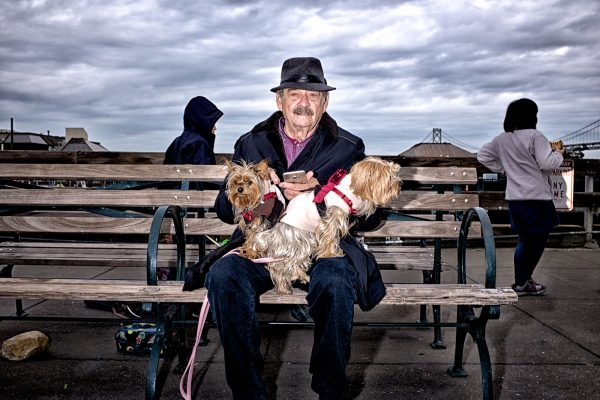 dogs pier sf SAN FRANCISCO california ca untited states usa street photography