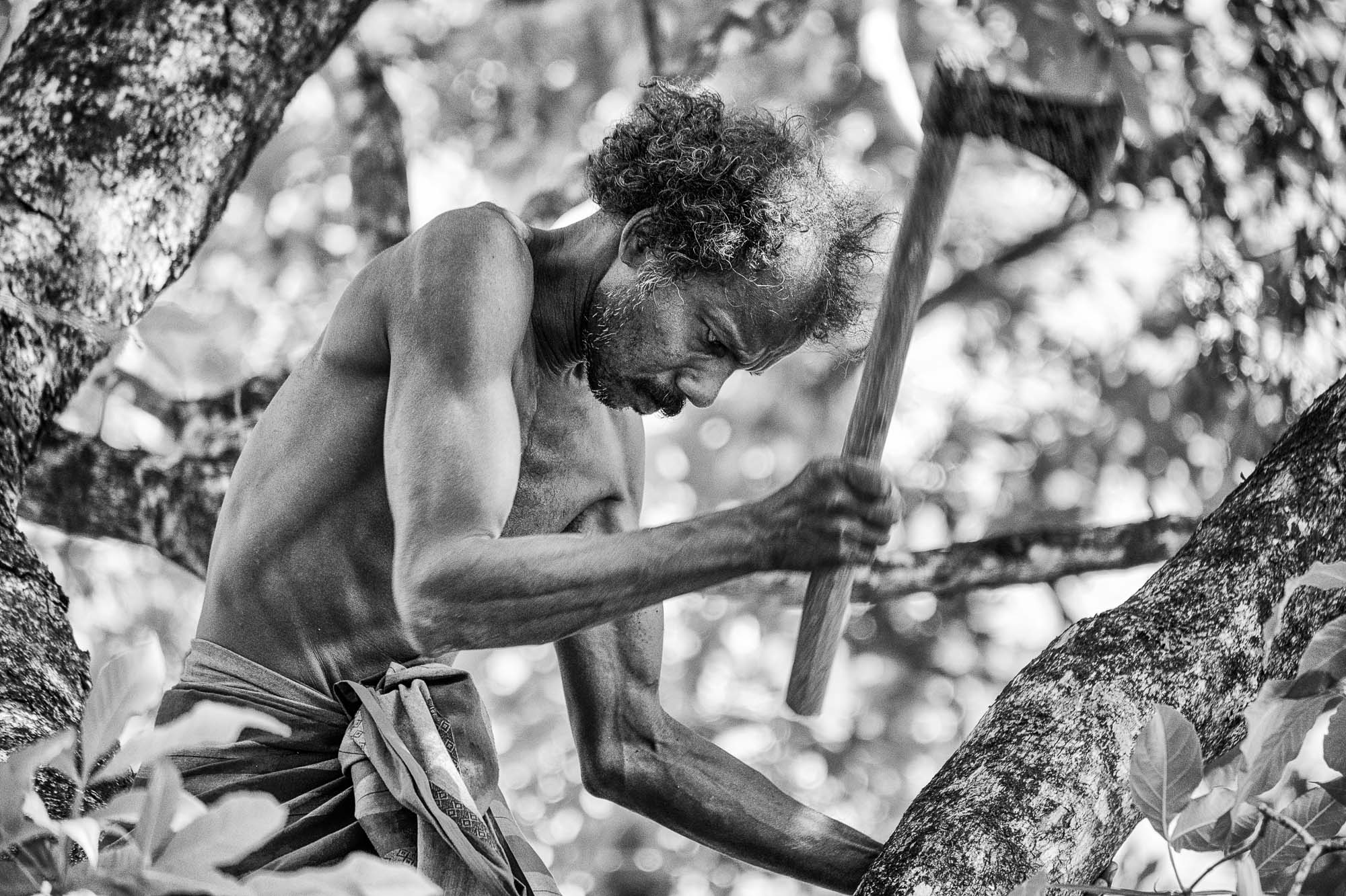 Vadda sri lanka indingenous group people photography - veddas man cutting the tree