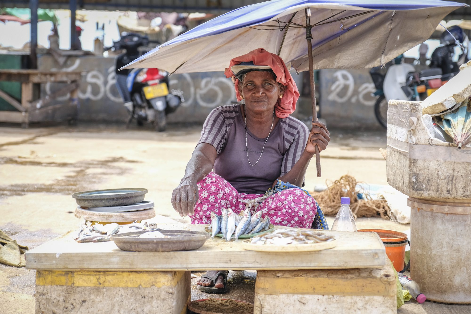 Dry Fish beach Market Negombo Sri Lanka Travel Photography Fujifilm XE3