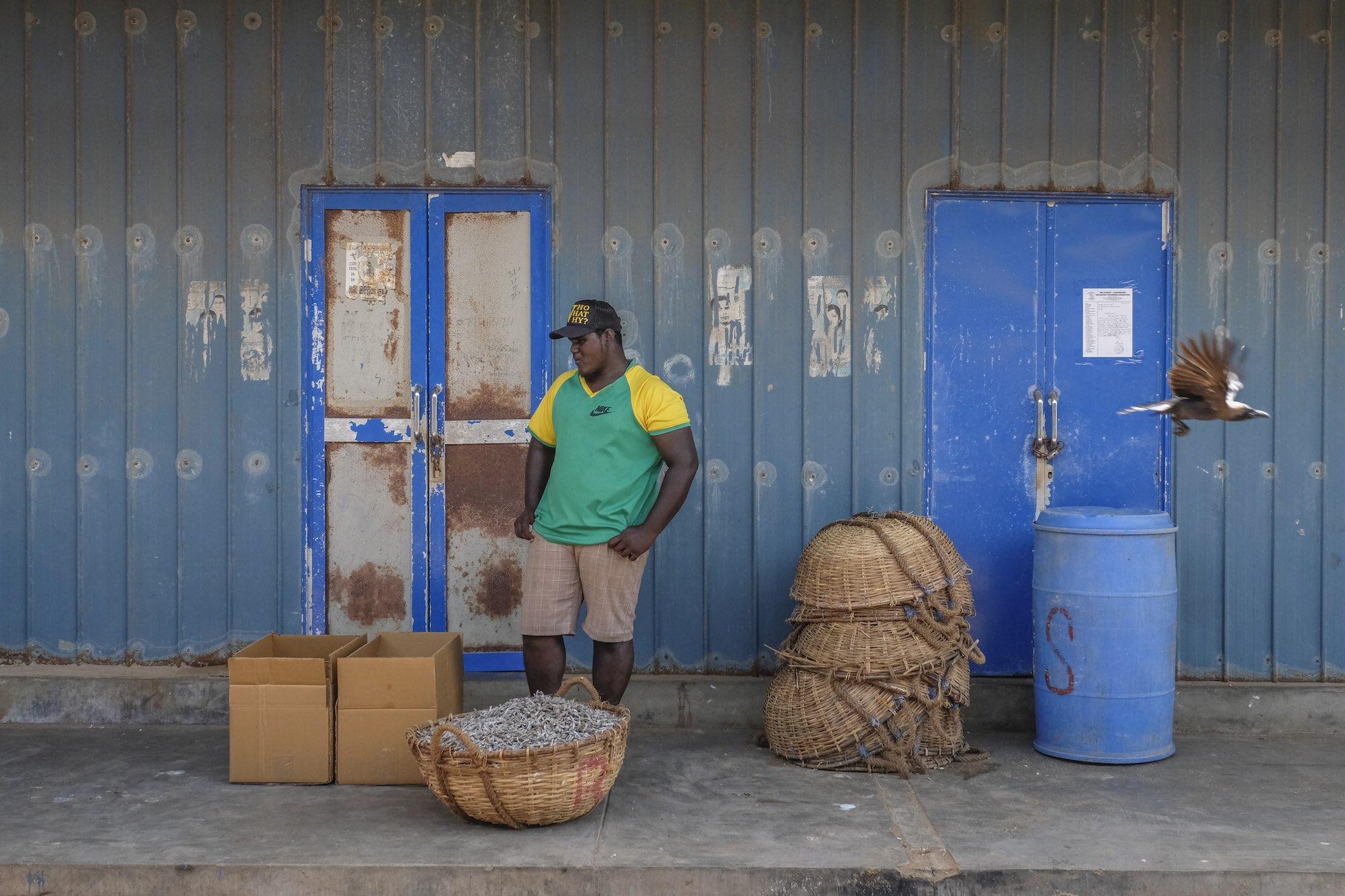 Negombo sri lanka travel fish market blue Fujifilm XE3