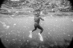 Underwater photography fujifilm xt2 mirroless camera haenyeo jeju