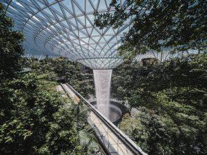 Laowa 17mm f:4 Ultra Wide GFX Zero D lens Fujifilm GFX 100 Tallest Indoor Waterfall at Jewel Changi Airport 4