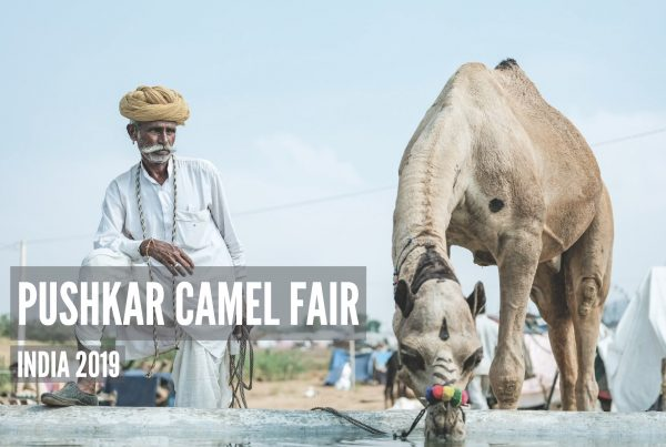 Pushkar Camel Fair - Travel Video by Jose Jeuland 4K with subtitles FUJIFILM X-H1 India Rajasthan