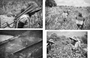 Lens Magazine Issue 6536 Jose Jeuland Photographer Black White Photography