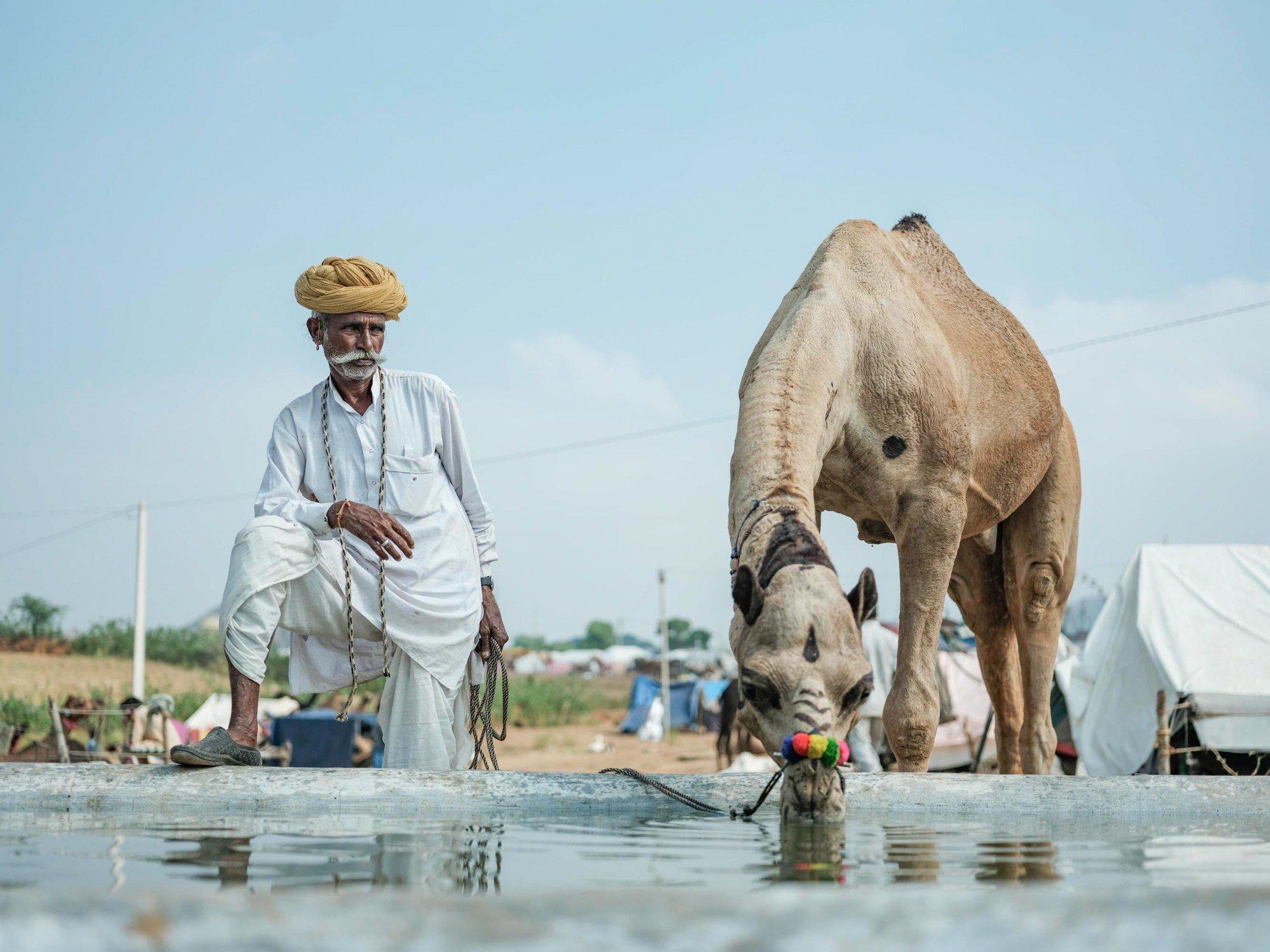 Pushkar Camel Fair Documentary Photography Travel Jose Jeuland Singapore-1 2