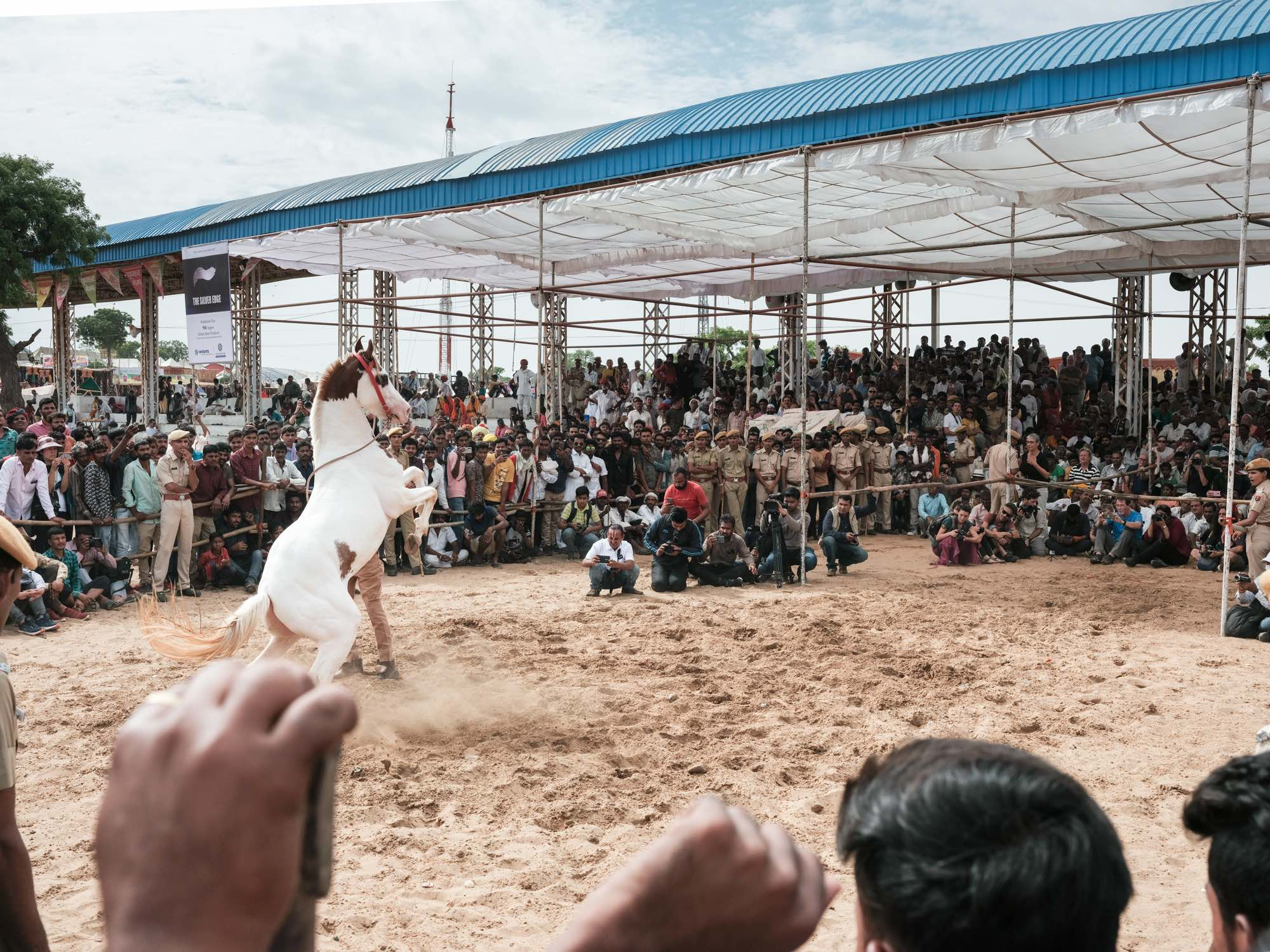 Pushkar Camel Fair Travel Documentary Photography India Jose Jeuland-1-5