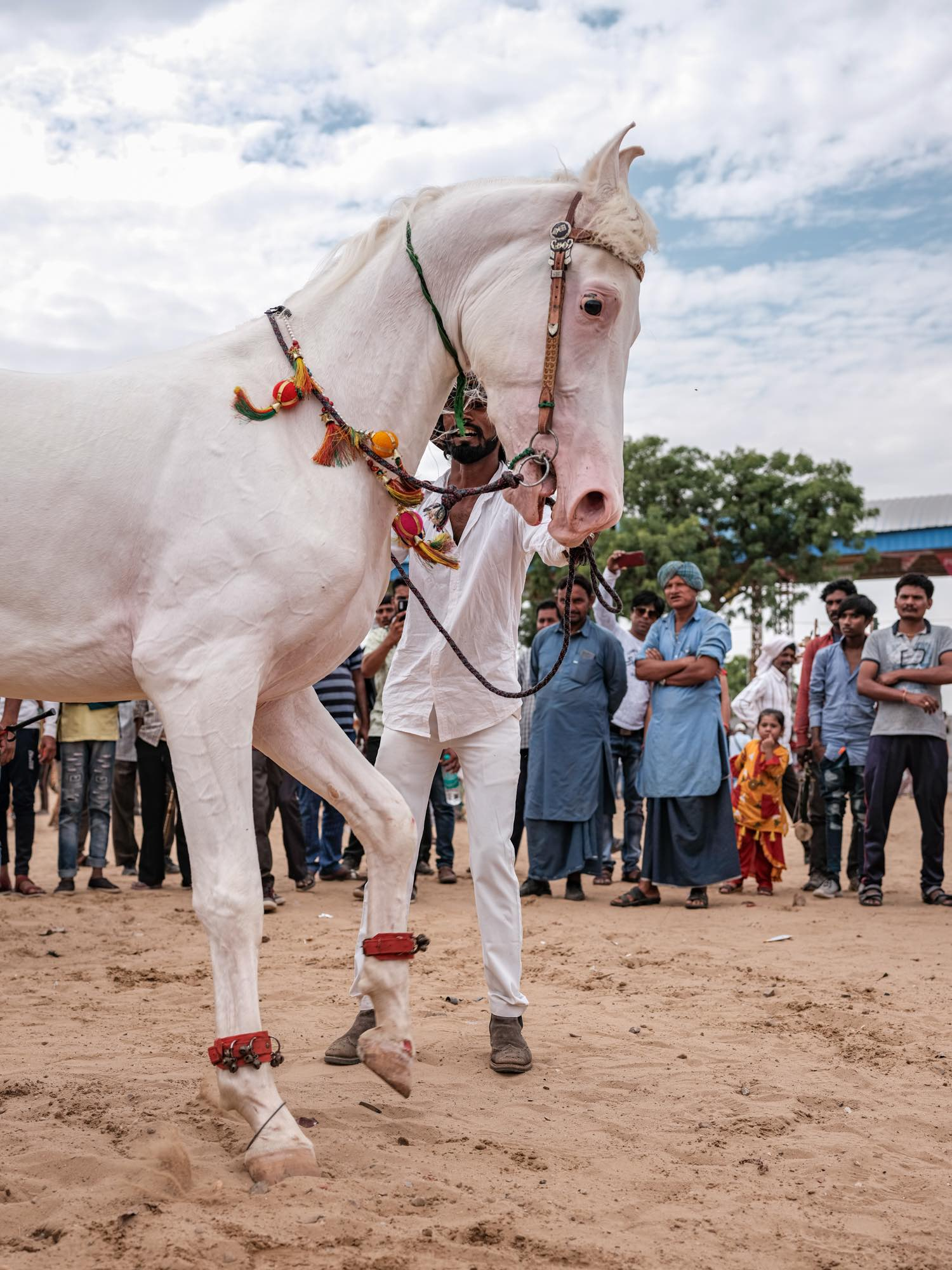 Pushkar Camel Fair Travel Documentary Photography India Jose Jeuland-1-6