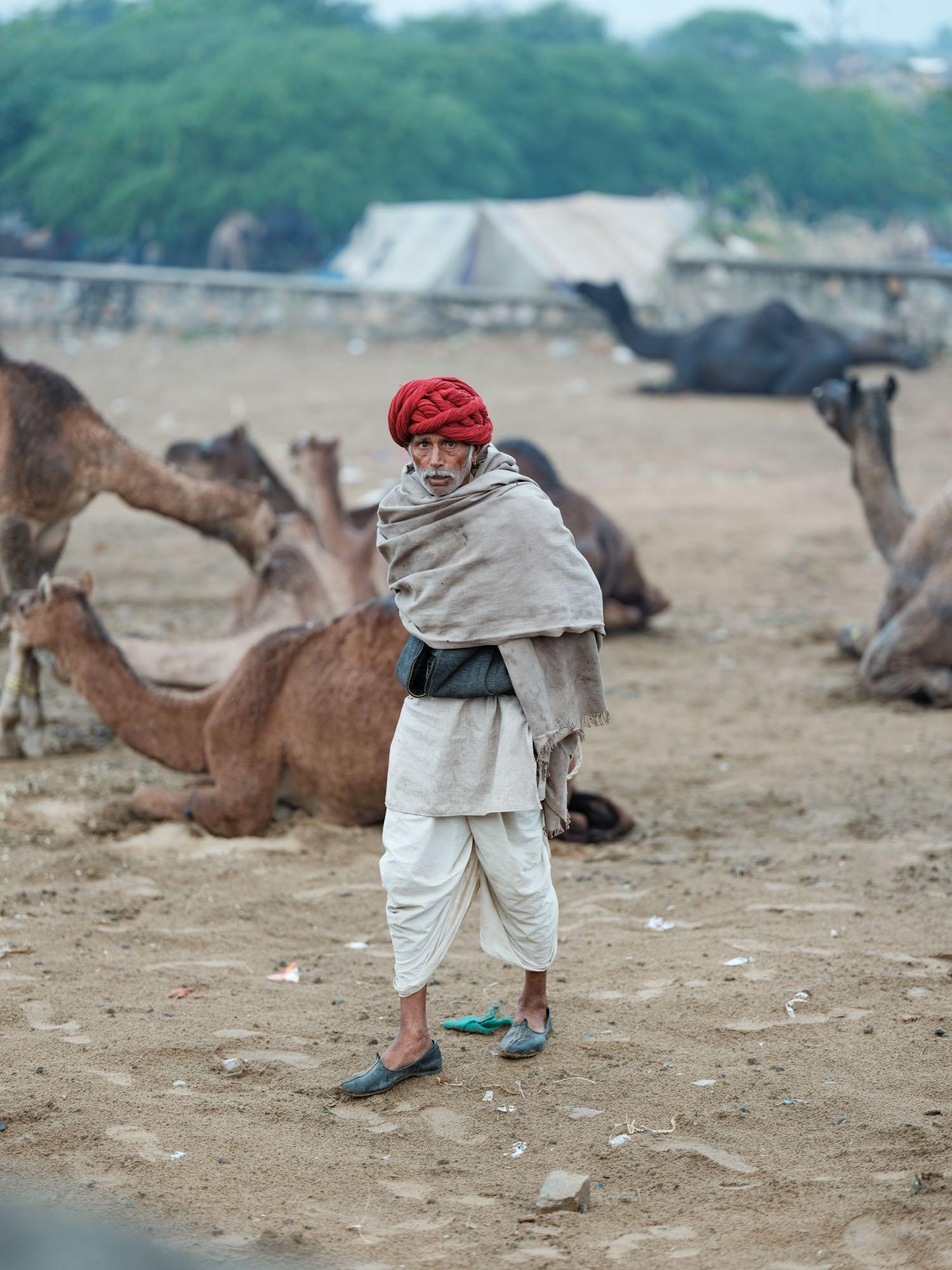 Pushkar Camel Fair Travel Documentary Photography India Jose Jeuland-1