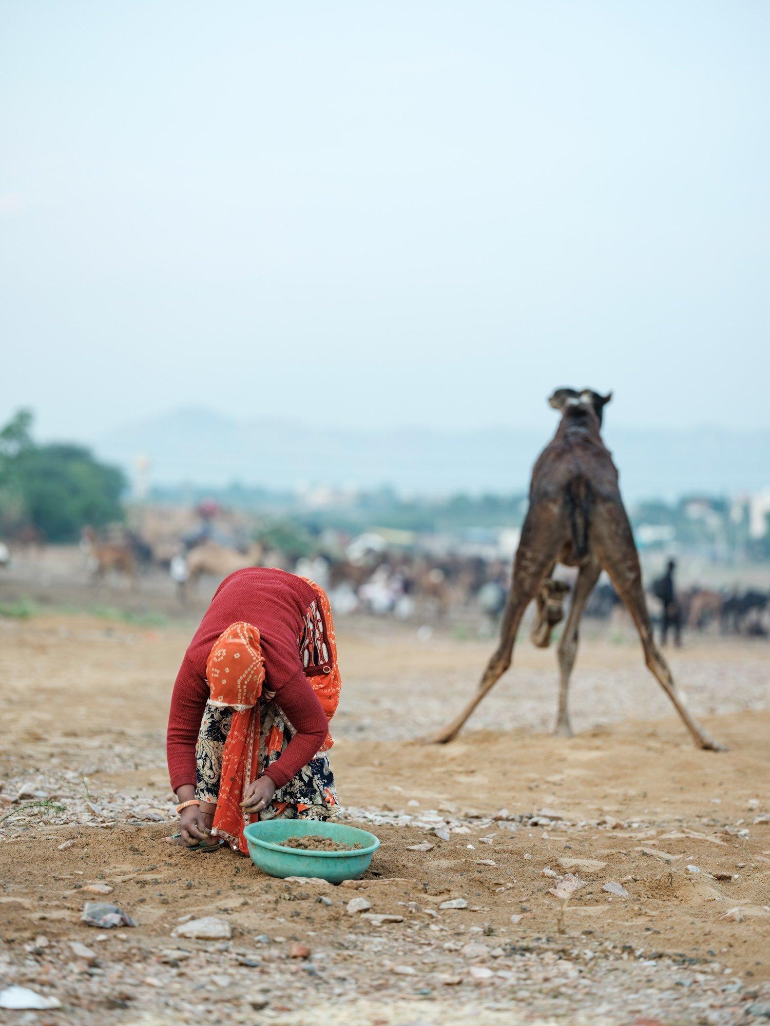 Pushkar Camel Fair Travel Documentary Photography India Jose Jeuland-4