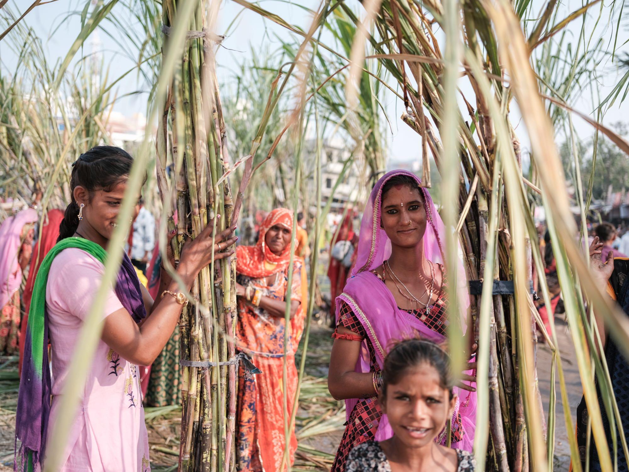 Pushkar Camel Fair Travel Documentary Photography India Jose Jeuland-9-2