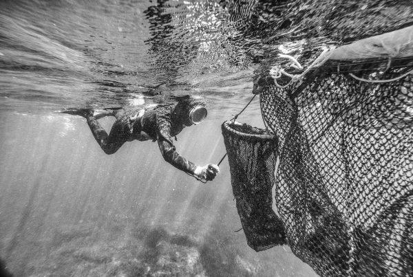 Haenyeo Women Divers Jeju Island Underwater Documentary Photography 3