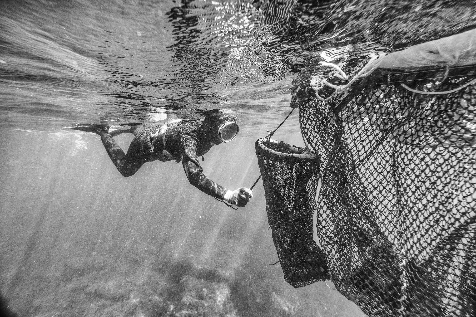 Haenyeo Women Divers Jeju Island Underwater Documentary Photography 3